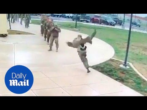 Goose Attacks US Soldiers In Hilarious Video - Daily Mail