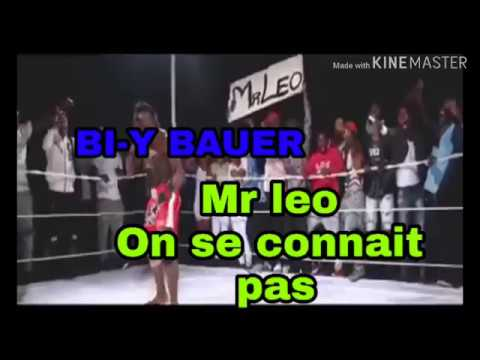 "Mr Leo ""On Se Connait Pas"" (official Video)"