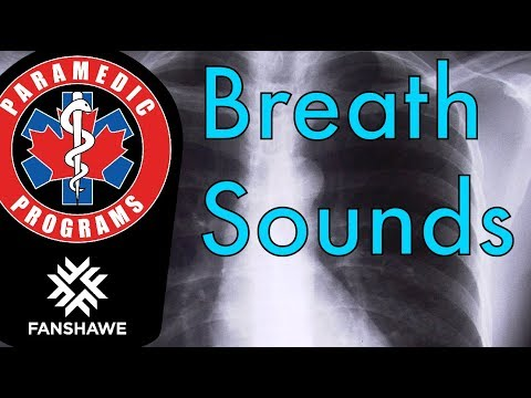 Research: The ability of paramedic students to accurately assess breath sounds (2018)