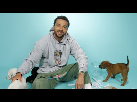 Jesse Williams Plays With Puppies While Answering Fan Questions ...