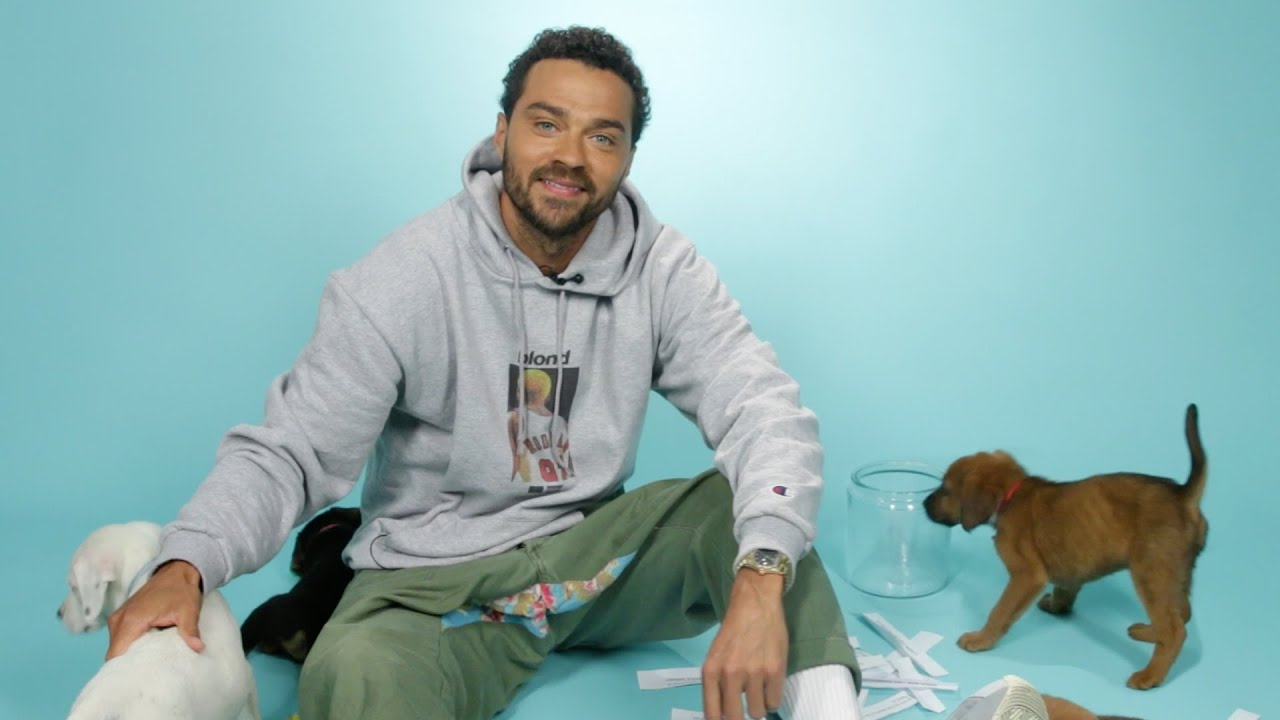 Jesse Williams Plays With Puppies While Answering Fan ...