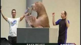 Oddball - Musical Walrus, Reindeer Poop Ornaments