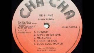 Bingy Bunny - Me & Jane