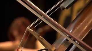 cello fury documentary wqed tv