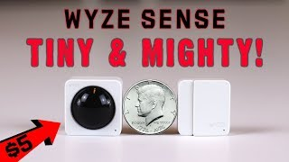 HOW TO USE WYZE CAM WITH ALEXA - VideoRuclip