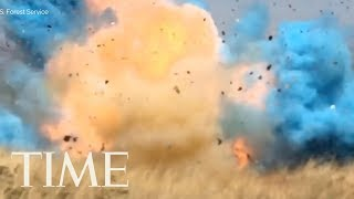 The Moment A Border Patrol Agent Sparked A 45,000 Acre Wildfire During A Gender Reveal Party | TIME