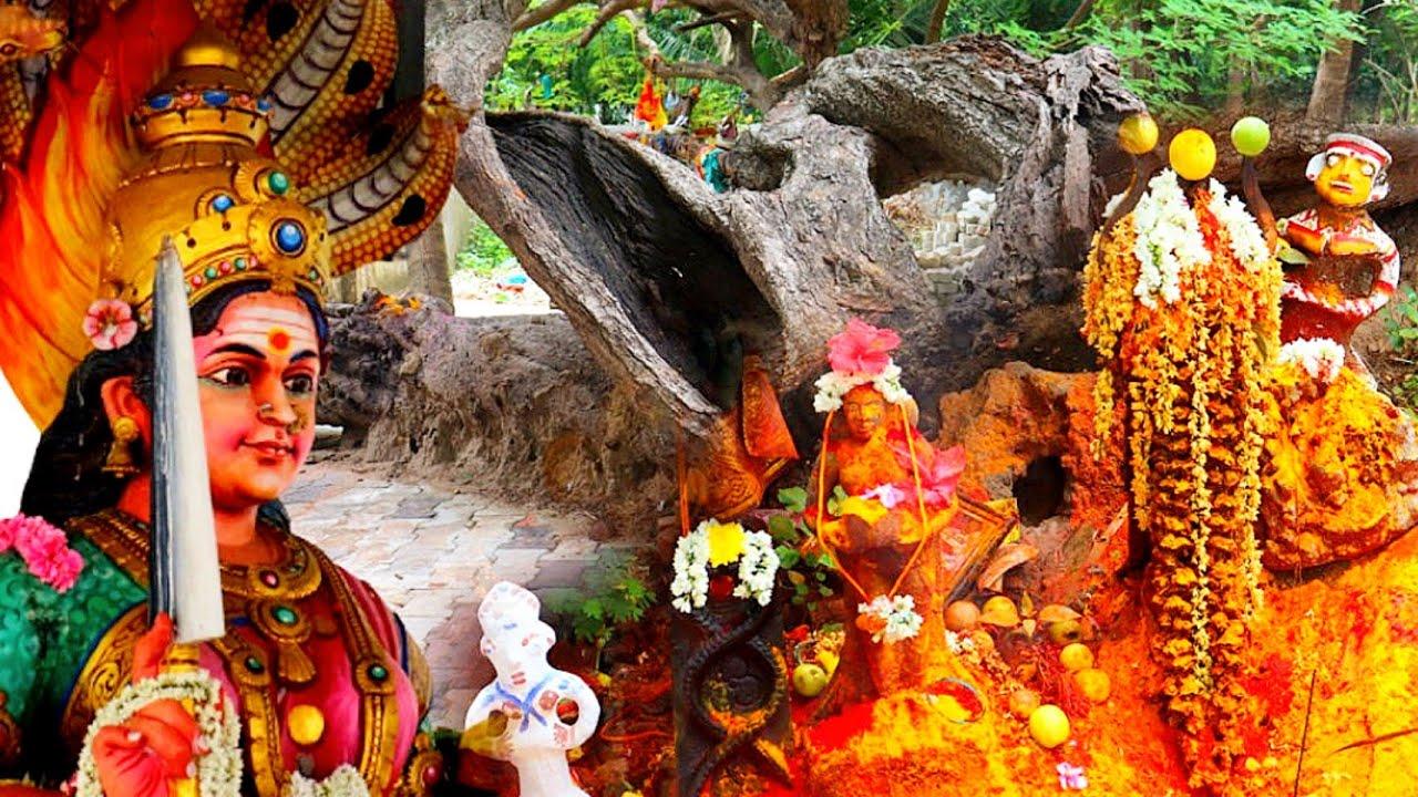 மாதானம் அருள்மிகு முத்துமாரியம்மன் ஆலயம் Madhanam Mariamman Temple History #amman #ammantemple
