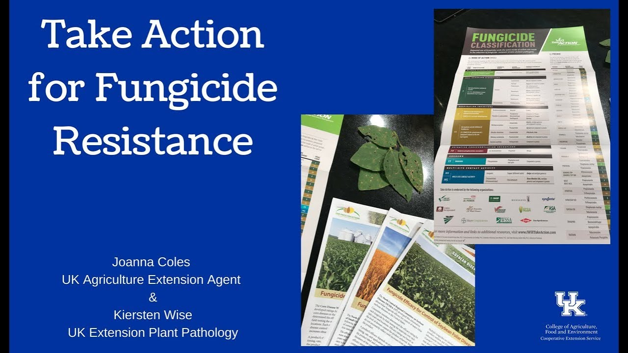 Take Action for Fungicide Resistance