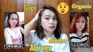 HAIR GROWER SHAMPOO|INFAIRNESS