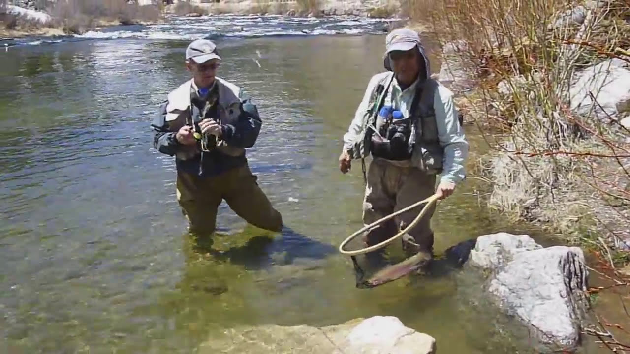 Taylor river hogs catching by mouth not snagging like for Taylor fly fishing