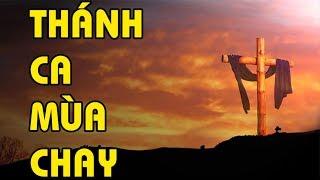 THÁNH CA MÙA CHAY   CHO CON KHÁT KHAO - Tuyệt Phẩm Thánh Ca Mùa Chay Hay Nhất -