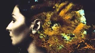 Steven Wilson - Ancestral (Ninet Edit)