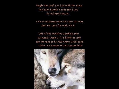 Enya   -Crying Wolf-