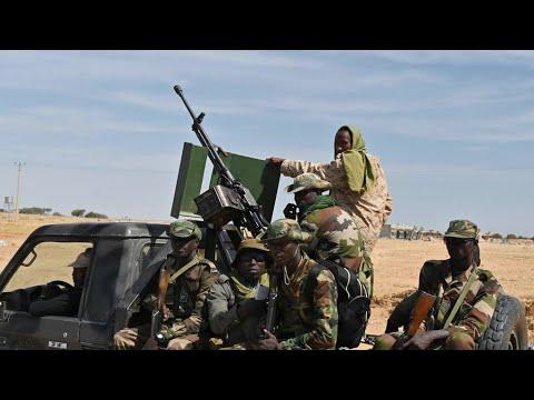 Niger : de nombreux morts dans des attaques d'hommes armés près de la frontière avec le Mali