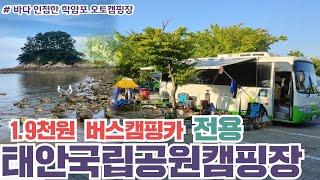 1.9천원 태안국립공원 오토캠핑장 l 카라반, 버스캠핑…