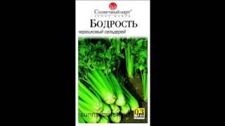 Семена сельдерея оптом(, 2013-05-06T12:37:55.000Z)