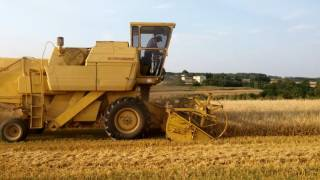 Żniwa 2016 jęczmień jary New Holland 1540