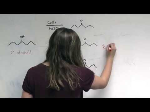 """Orgo!""- Organic Chemistry II Music Video"