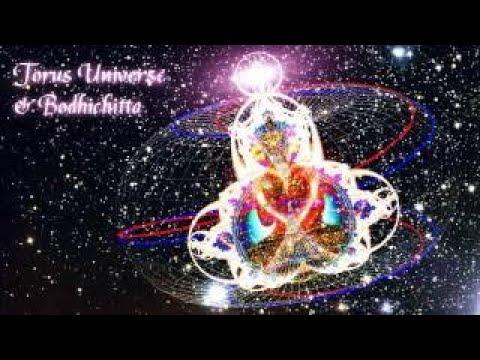 Torus Universe vesves Bodhichitta