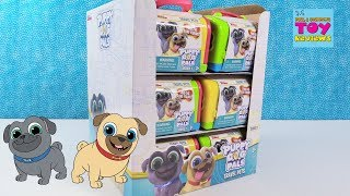 Disney Junior Puppy Dog Pals Travel Pets Blind Bag Toy Review | PSToyReviews