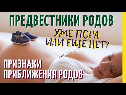 Предвестники родов и признаки приближения родов. Какие симптомы перед родами наблюдает беременная