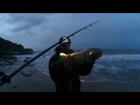 Cod Fishing At Hartley