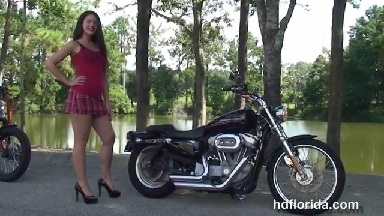 used 2007 harley davidson sportster 883 custom motorcycles. Black Bedroom Furniture Sets. Home Design Ideas