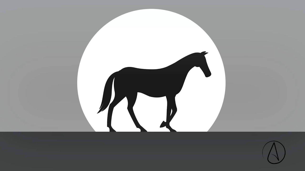 Horse Walk  for Animation Horse Running  66plt