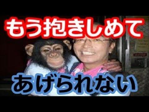 志村 けん チンパンジー