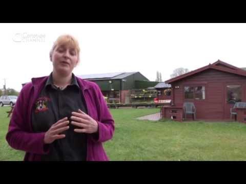 CC-E67 CAMPSITE - West Midlands, Red Lion Farm caravan park