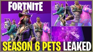 Fortnite: SEASON 6 PETS LEAKED! «Chien, lama, et plus!