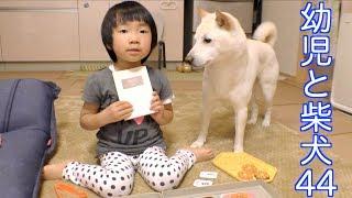 娘4歳になりました。犬7歳半。 前回 https://www.youtube.com/watch?v=g...