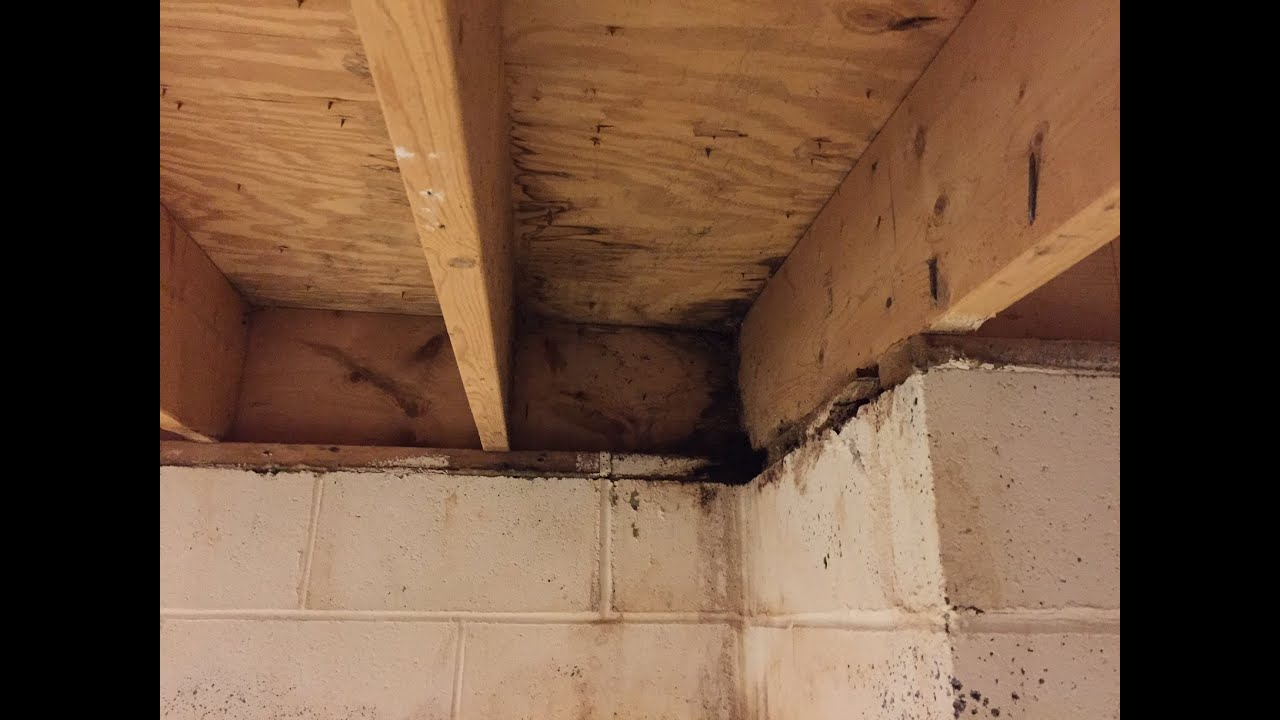 Basement Water Leaks Can Come From Above Home Repair Advice