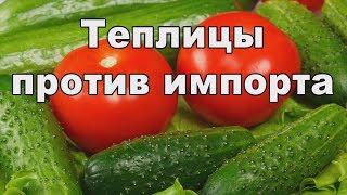Овощи наши. Импортозамещение теплиц