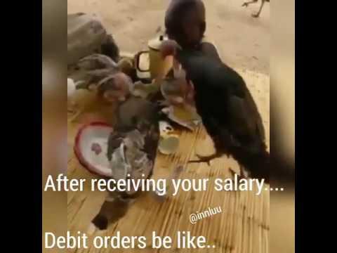 hqdefault debit orders be like youtube