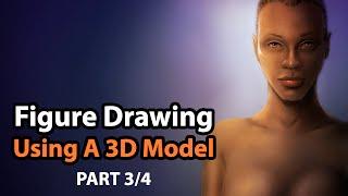 Figure Drawing Using a Poser 10 3D Human Model & Corel Painter [Part 3/4]