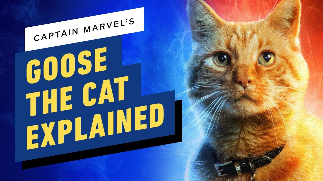 what is the cat in captain marvel? goose explained - youtube