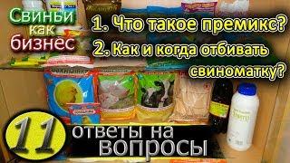 видео: ПРЕМИКС ДЛЯ СВИНЕЙ / ОТЪЕМ ПОРОСЯТ