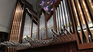 1978 Schudi Organ - St. Thomas Aquinas Catholic Church, Dallas, Texas