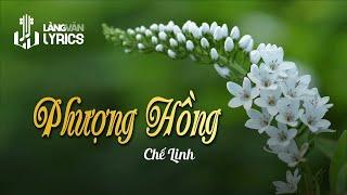 Chế Linh - Phượng Hồng  [OFFICIAL KARAOKE VERSION]