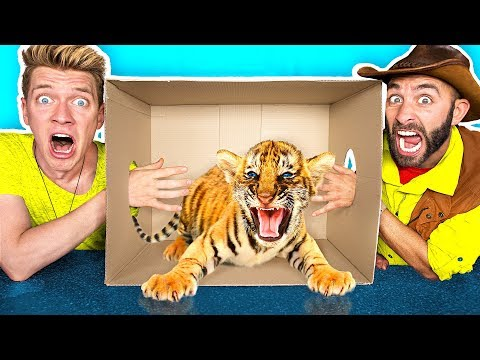 Thumbnail: What's in the BOX Challenge!! **LIVE ANIMALS** Gross Giant Slime Orbeez & Real Food vs. Gummy Food
