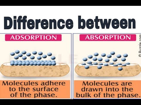 difference between adsorption and absorption pdf