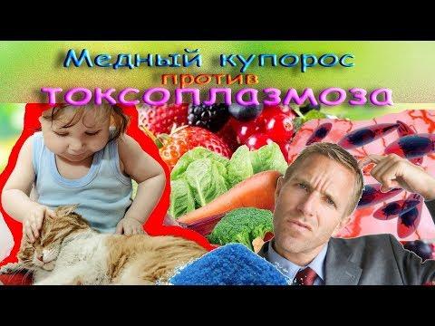 Медный купорос против токсоплазмоза. Фильм 3.