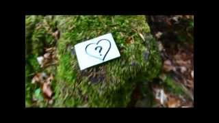 Смотреть клип Pixie Paris - Ich Lieb Dich Nicht Immer