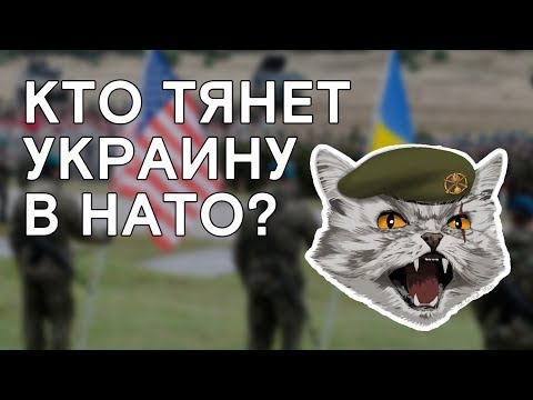 Зачем Украине идти в НАТО?