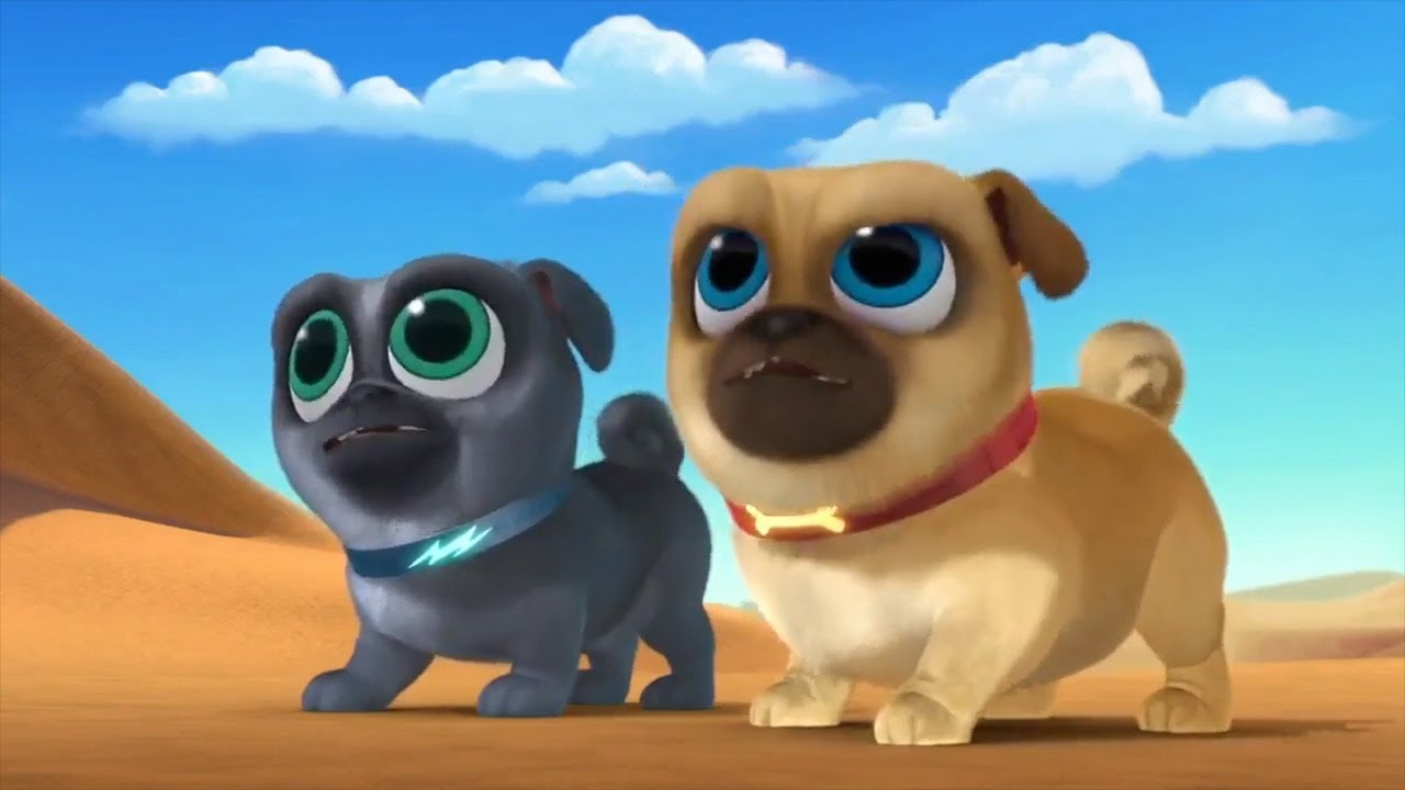 Bingo And Rolly Save Hissy From A Camel Puppy Dog Pals 2017 Disney