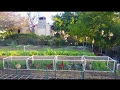 Small Scale Backyard Pastured Poultry - The Chicken Train