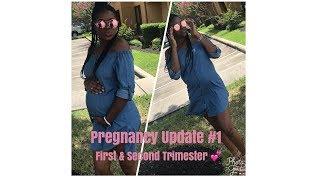 Pregnancy Update #1| First & Second Trimester! 💕
