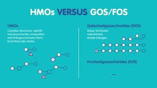 Human Milk Oligosaccharides (HMOs)