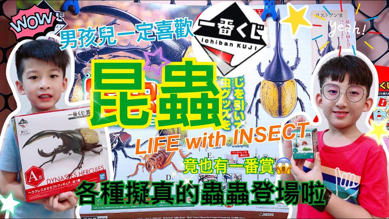 「一番賞」昆蟲 LIFE with INSECT ~男孩最喜歡的擬真巨大蟲蟲!實體超驚人!還有選賞小秘訣透露給你看~~~